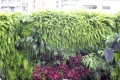 jardim-vertical-residencial-01