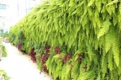 jardim-vertical-residencial-05